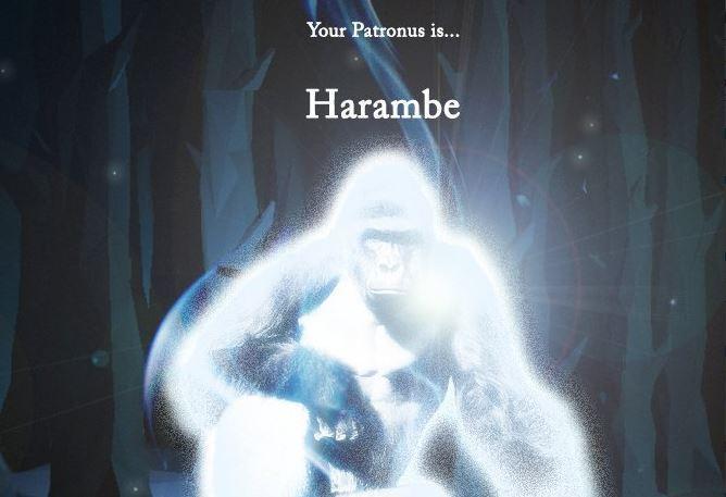 harambe-patronus